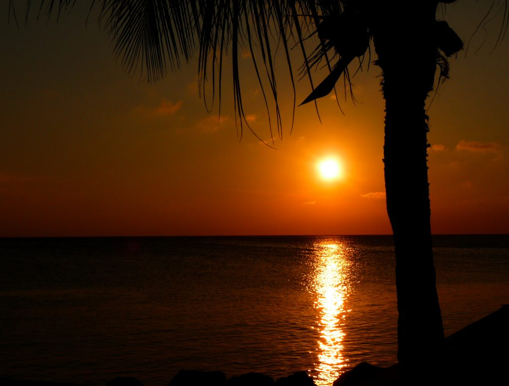 roatan sunset cruises