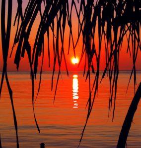 sunset cruise roatan